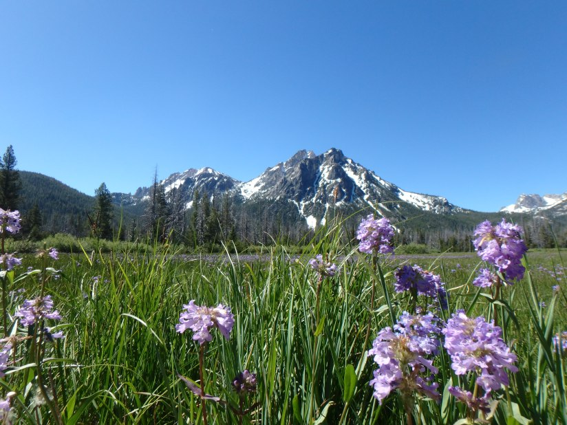 Camping in theSawtooths